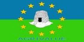 Logo Agrivalue