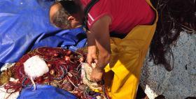 Pesca artigianale_Isola dell'Asinara_uniss
