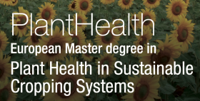 Plant Health in Sustainable Cropping Systems